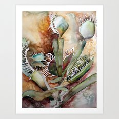 Venus Fly Trap Art Print
