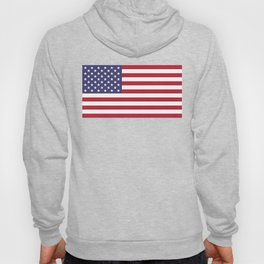 USA flag - Hi Def Authentic color & scale image Hoody