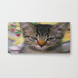 Swoozle's Tabby Kitten After Nap Metal Print