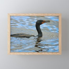 A Nice Day for a Swim Framed Mini Art Print