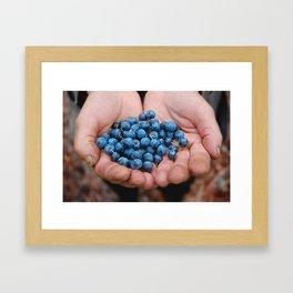 Blueberry Bogs Forever Framed Art Print