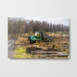 Poltery Site (Wood Storage Area) After Storm Victoria Möhne Forest 7 Metal Print