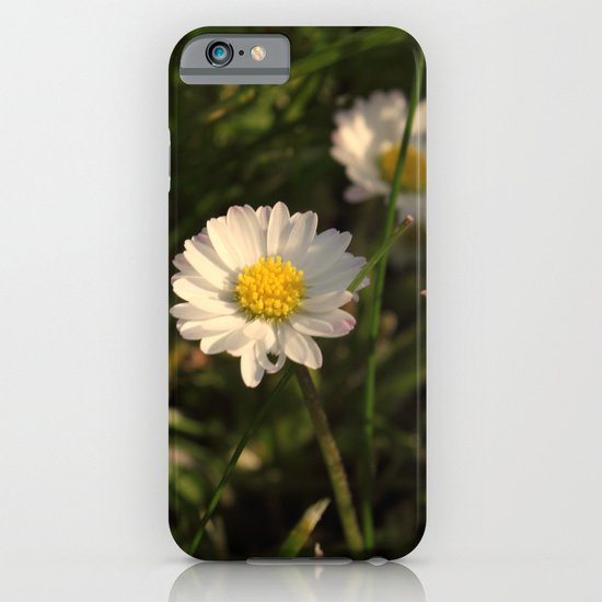 Daisy Daisy iPhone & iPod Case