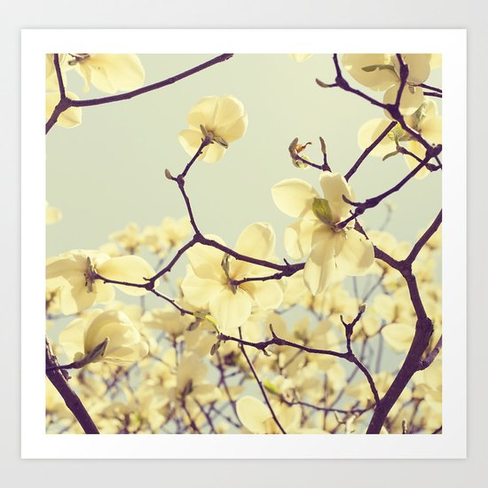 Magnolia Dream Art Print