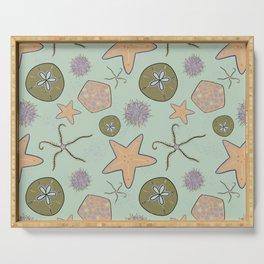 Sea stars and urchin - echinoderm beach print aqua Serving Tray