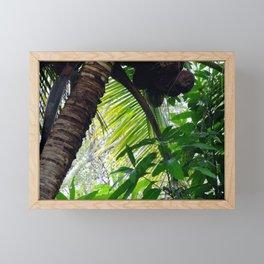 Coconut Palm Framed Mini Art Print