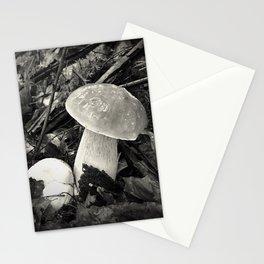 Made by rain - Mushroom series -I.- Stationery Cards