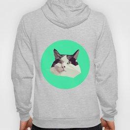 Cat Morpheus Polygonal Graphic Design Hoody