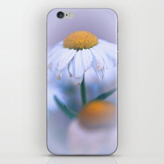 Softly Purple iPhone & iPod Skin