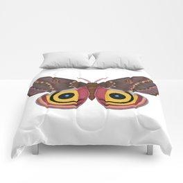io moth (Automeris io) female specimen 2 Comforters
