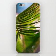 Palm Series 1 iPhone & iPod Skin