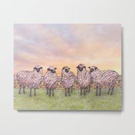 sunrise sheep Metal Print