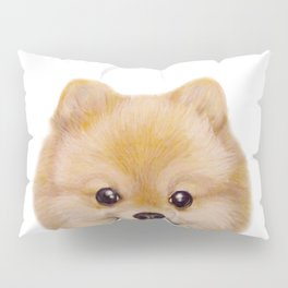Pomeranian Dog illustration original painting print Pillow Sham