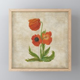 Vintage painting - Bunch of poppies Poppy Flower floral Framed Mini Art Print