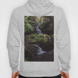 Jungle Waterfall Hoody