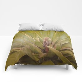 Frond Fan Comforters