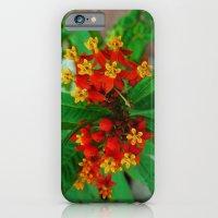 Orange and Yellow Flowers iPhone 6s Slim Case
