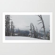 Where The Trees Die Art Print