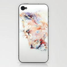 I belong in Africa ... Lion iPhone & iPod Skin