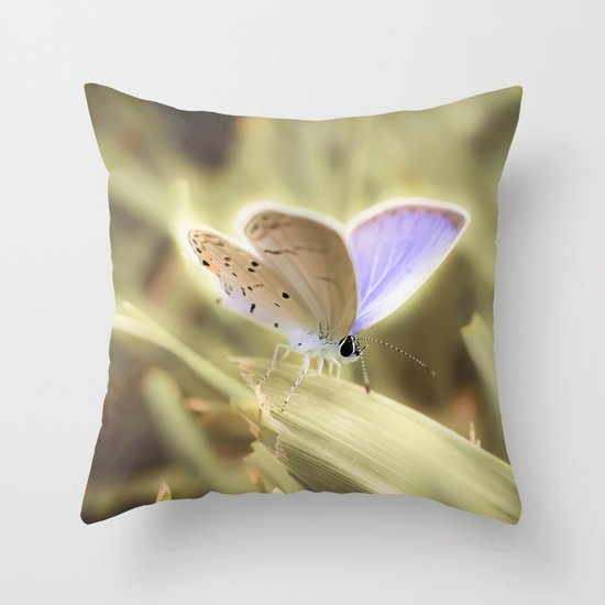 Purple Butterfly Throw Pillow