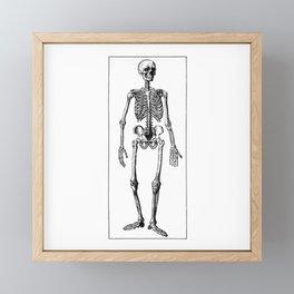 Skeleton Framed Mini Art Print