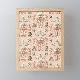 Ernst Haeckel - Jellyfish Scientific Illustration Framed Mini Art Print