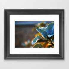Desert Leaves Framed Art Print