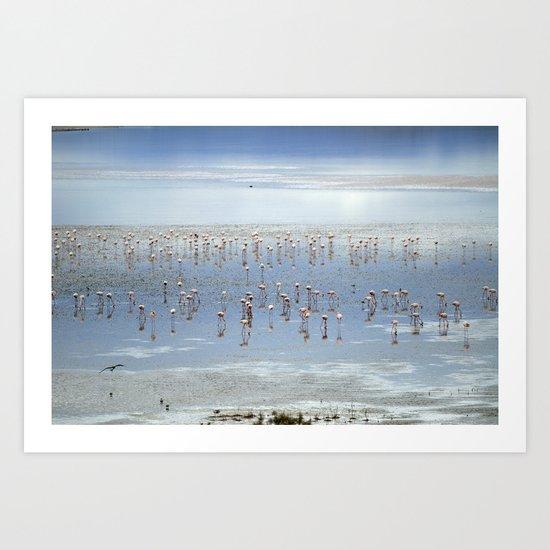 Flamingos at the blue lake Art Print