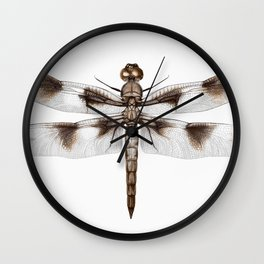 Twelve-Spotted Skimmer Dragonfly Wall Clock
