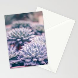 Succulent love Stationery Cards