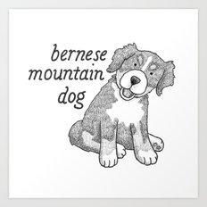 Dog Breeds: Bernese Mountain Dog Art Print