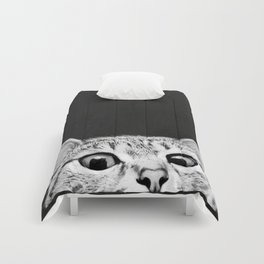 You asleep yet? Comforters