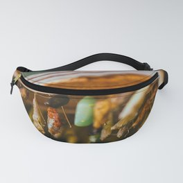 Butterfly Metamorphosis Photograph Fanny Pack