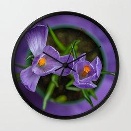 Purple Crocus in a Pot Wall Clock