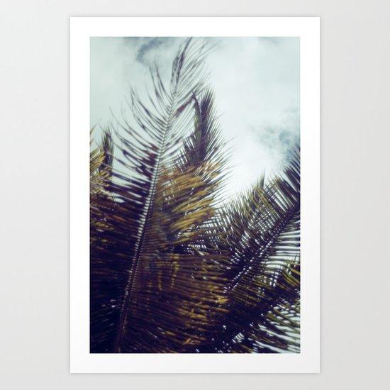 Palm Sky II Art Print