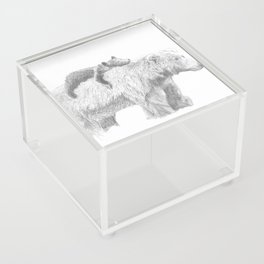 Mama and Cub Acrylic Box