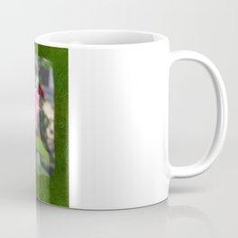 Pink Roses in Anzures 6 Blank P1F0 Coffee Mug