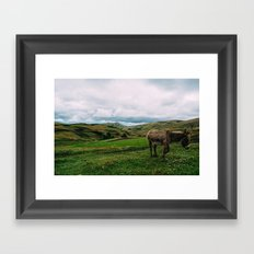 Ass Framed Art Print