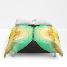 Butterfly (Lepidoptera) Comforters