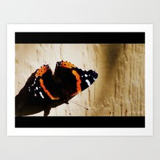 A Butterfly Called Blaze Art Print