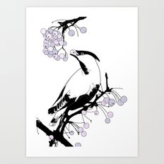 Waxwing Art Print