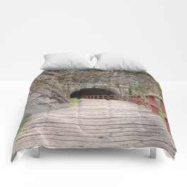 Paw Paw Tunnel Comforters