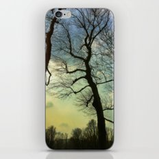 Remembering a winter sky iPhone & iPod Skin