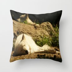 Sleeping white wolf in the summer sun Throw Pillow