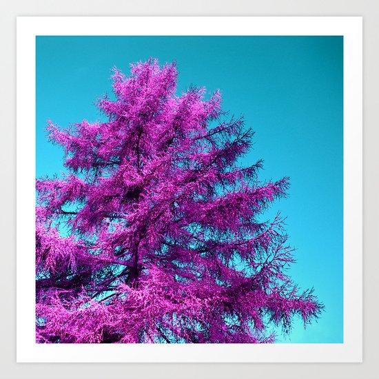 purple fir - tree I Art Print