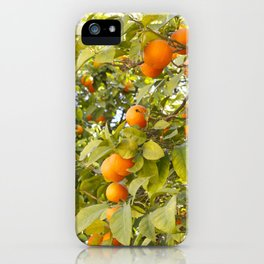 Fruits of Greece iPhone Case