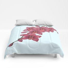 Dee Comforters