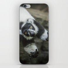 Lemur In The Glass iPhone & iPod Skin