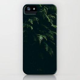 Minimalist Fern iPhone Case