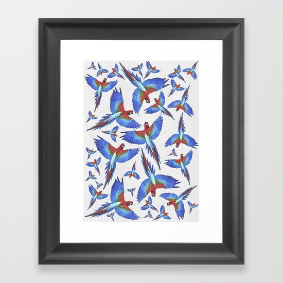 Parrot. Framed Art Print